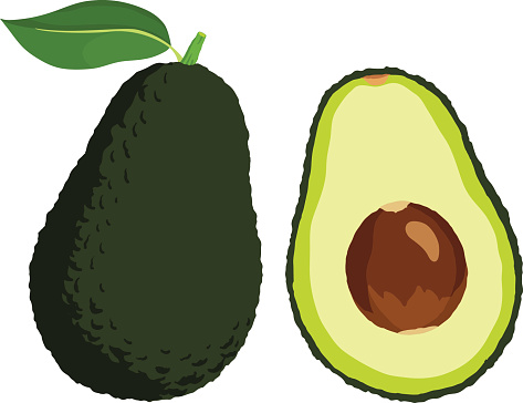 Avocado Clip Art, Vector Images & Illustrations.