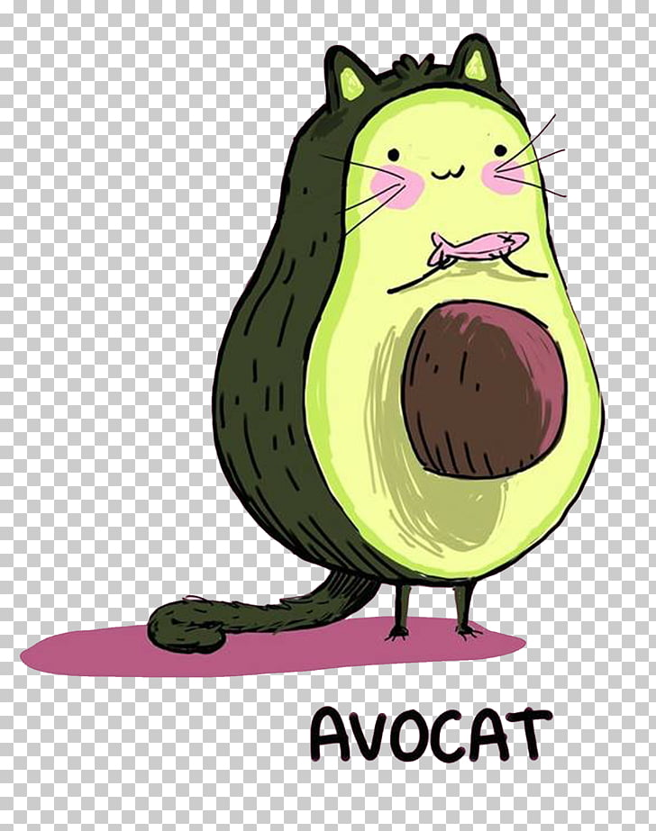 29 avocat PNG cliparts for free download.