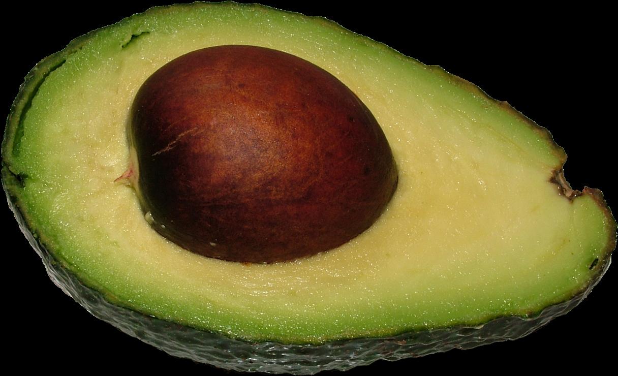 Nuts Clipart Avocado.