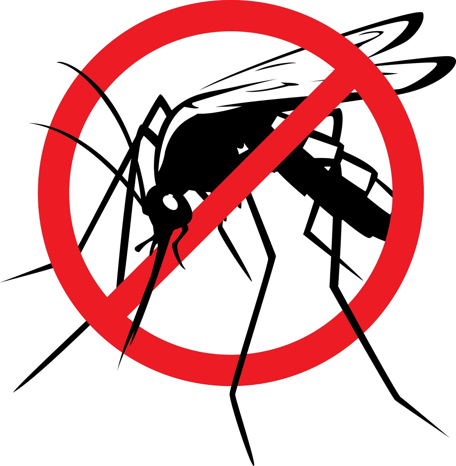 Dr. Deena\'s Daily Dose: Tips to prevent mosquito bites and.