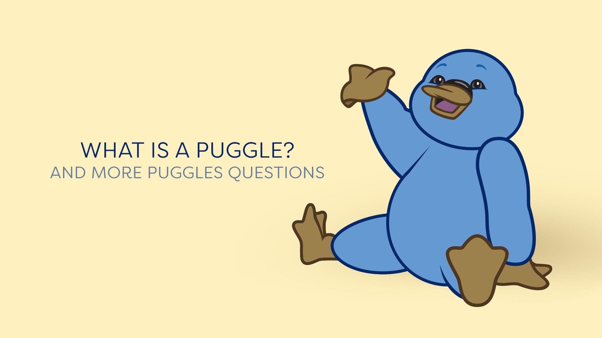 Puggles General Questions.
