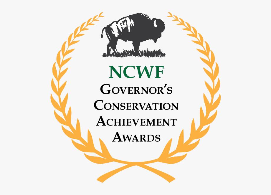 Governors Achievement Award Logo.