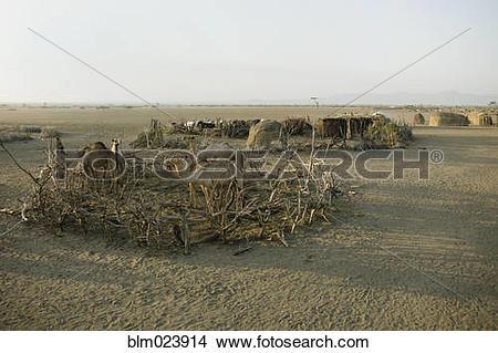 Stock Photo of Awash, Fontale, Ethiopia blm023914.