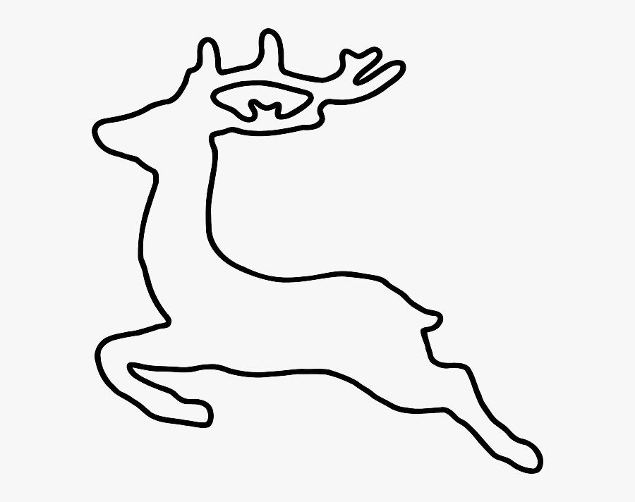 Deer, Jumping, Animal, Running, Running Away.