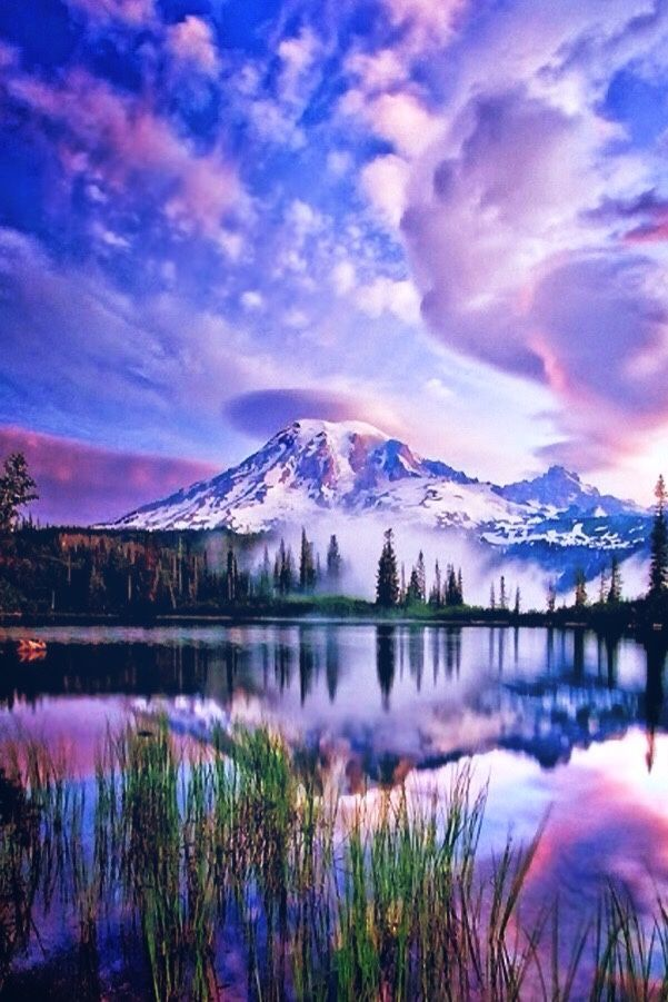 1000+ ideas about Amazing Nature Photos on Pinterest.
