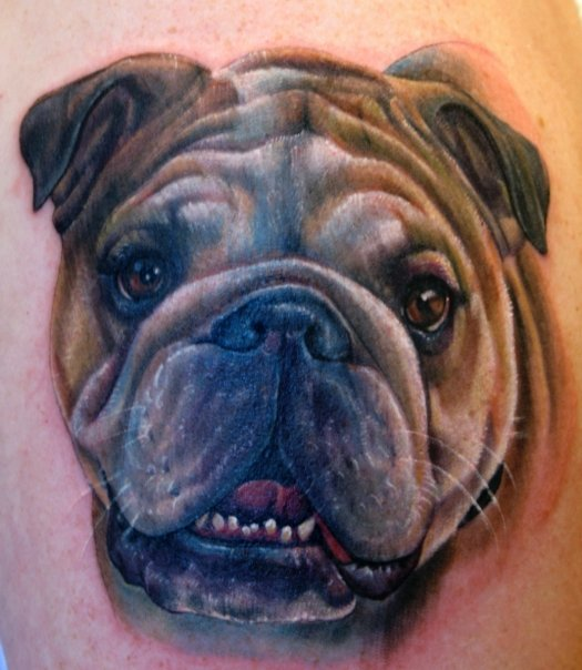 6 Best Bulldog Tattoo Designs.