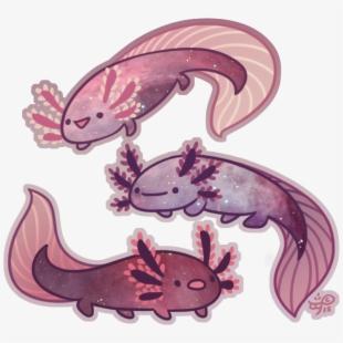 Feminist Axolotl.