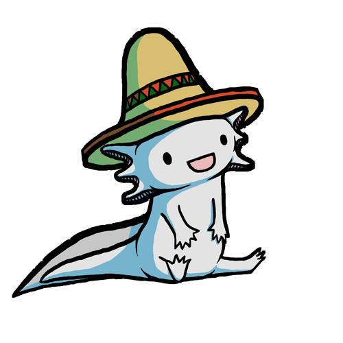 Axolotl Sources.