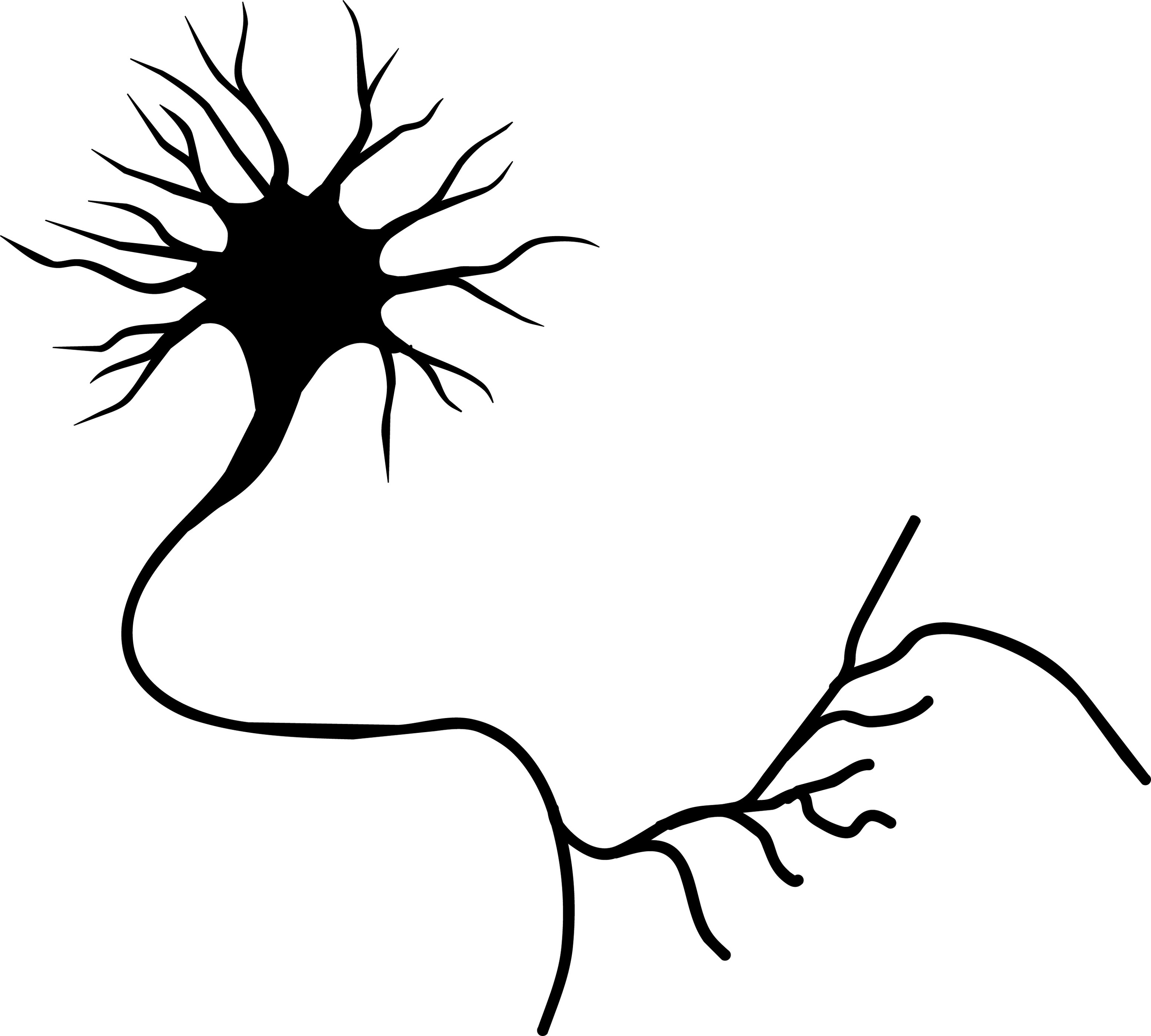 Neuron With Axon Clip Art Vector Online Royalty Free Clipart.
