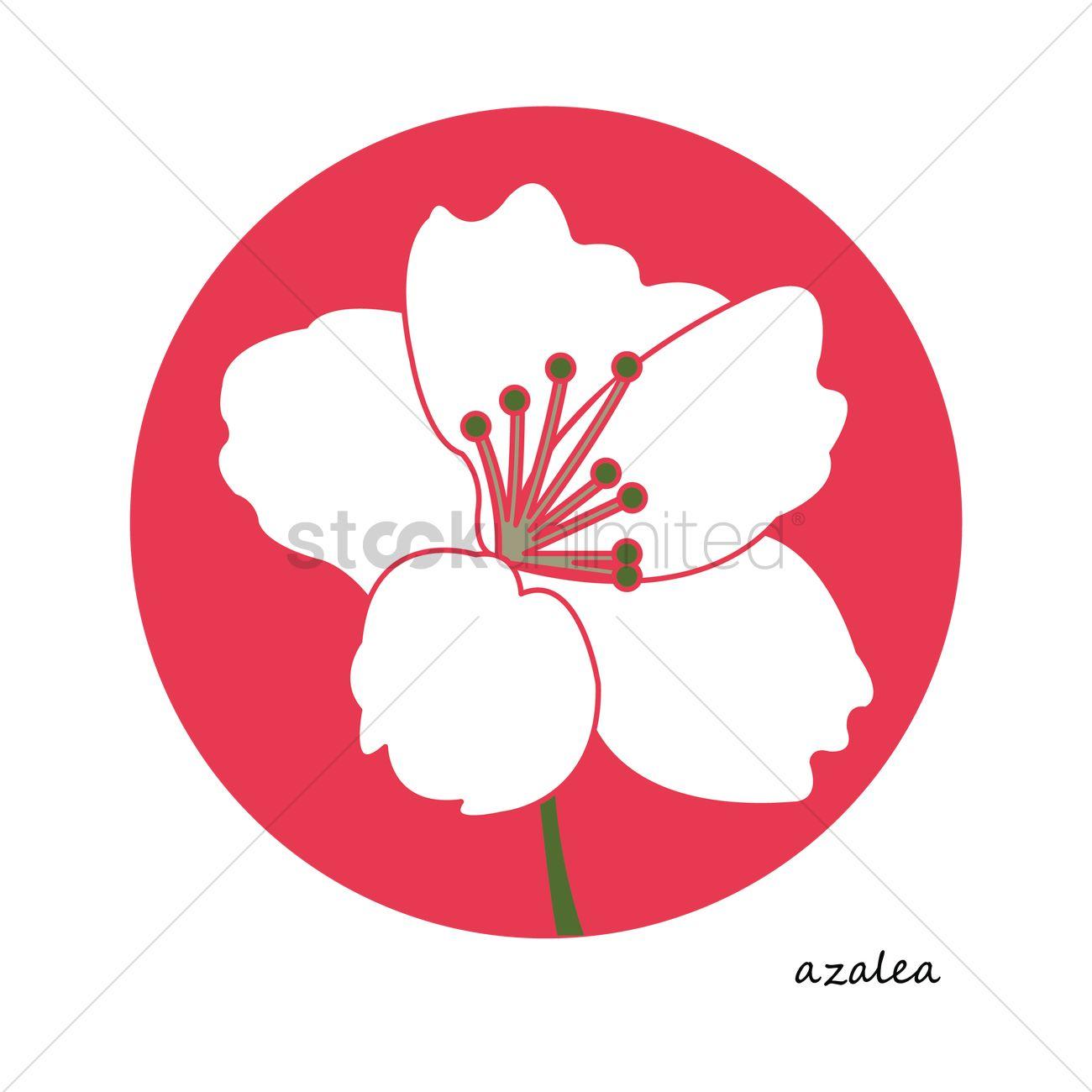 Free Azalea flower Vector Image.