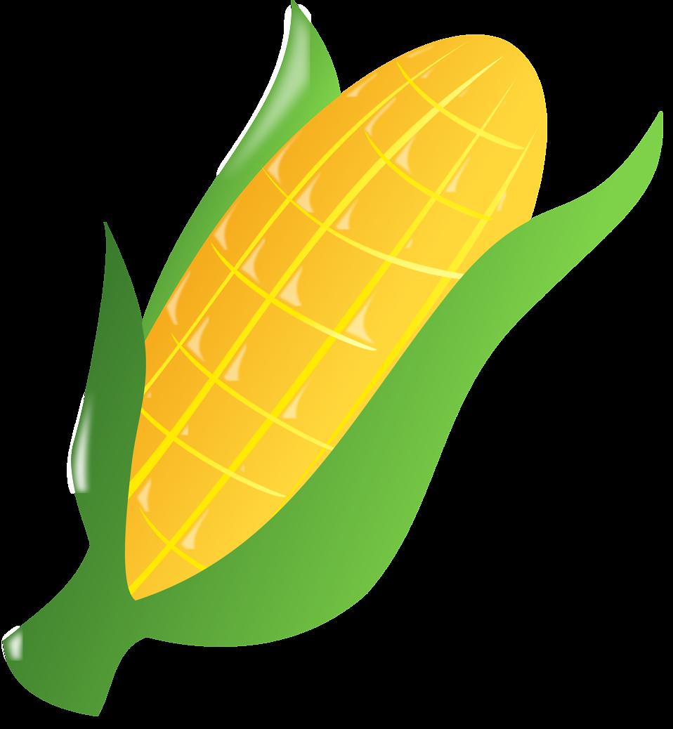 3559 Corn free clipart.