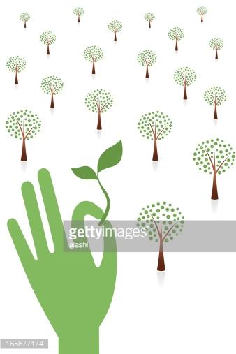 Grün, Baum, Bäumchen, Nachhaltigkeit, Hände UND Schutz premium.