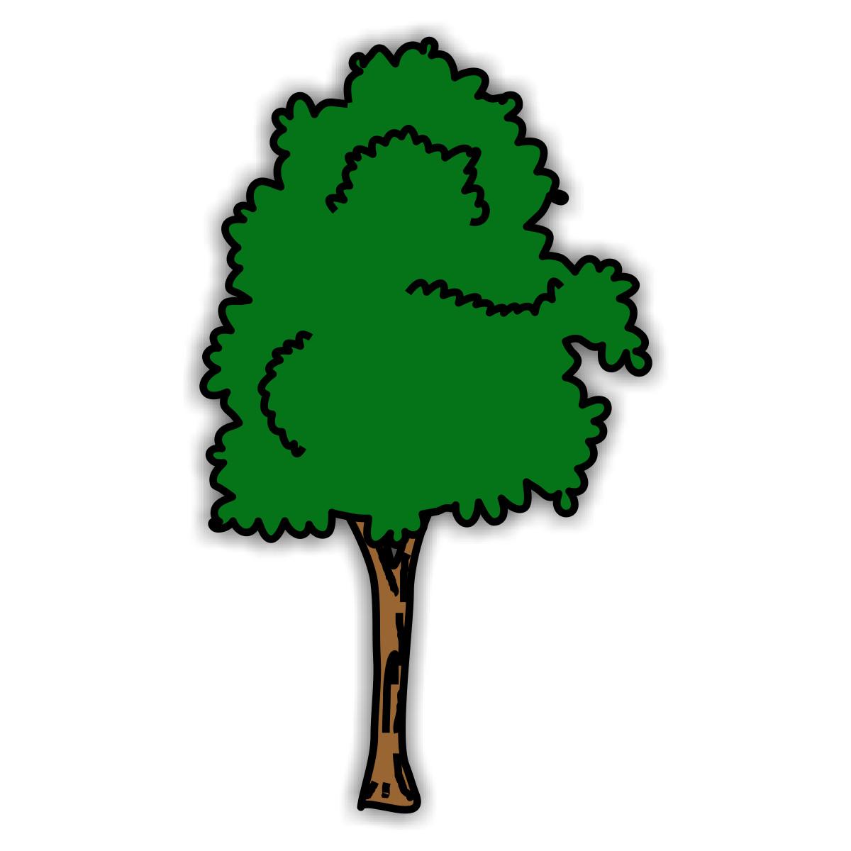 Bilder Baum Blätter.