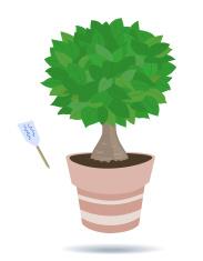 Bonsai Bäume UND Grünpflanzen IN Keramik Töpfe premium clipart.