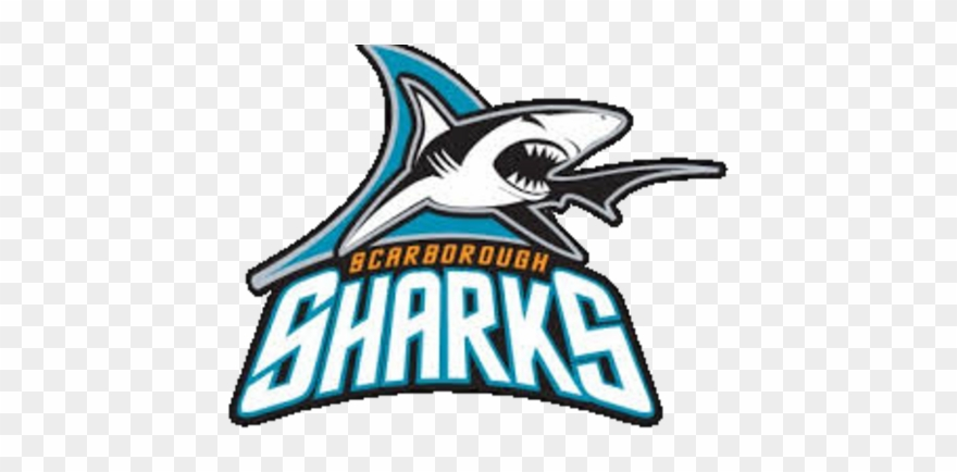 Scarborough Sharks Bantam B Girls Hockey Team Clipart.