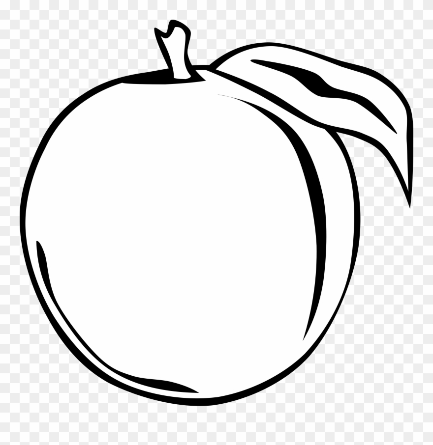 Orange Clipart Black And White Png Transparent Png (#64070.