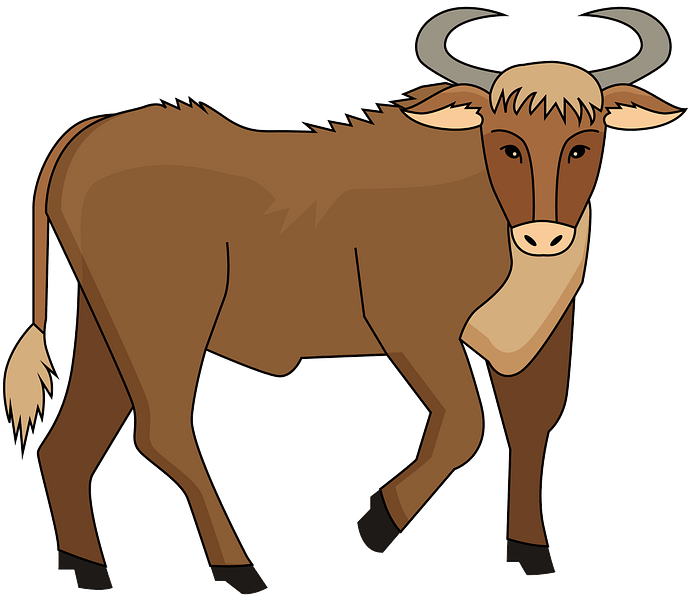 Bull clipart. Free download..