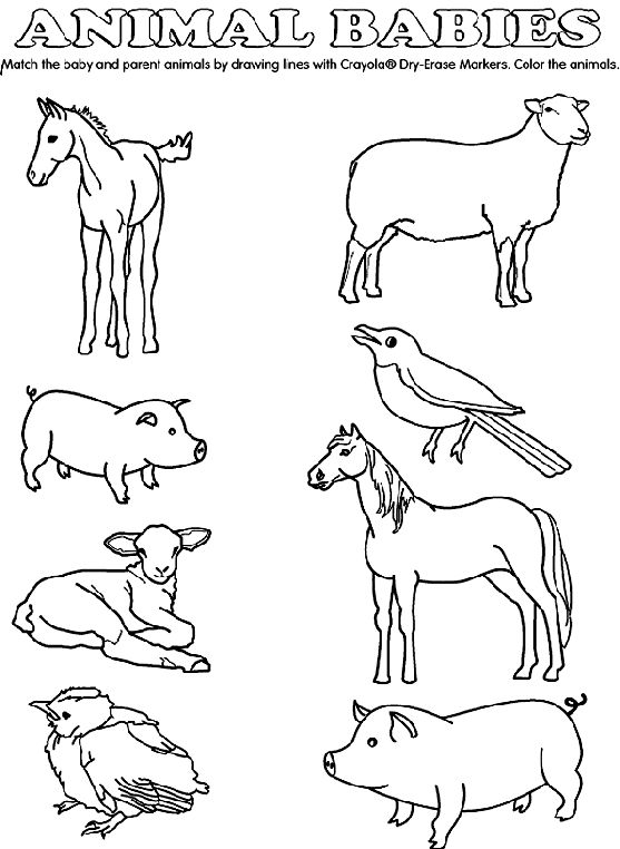 Animals And Their Young Clipart Black And White.