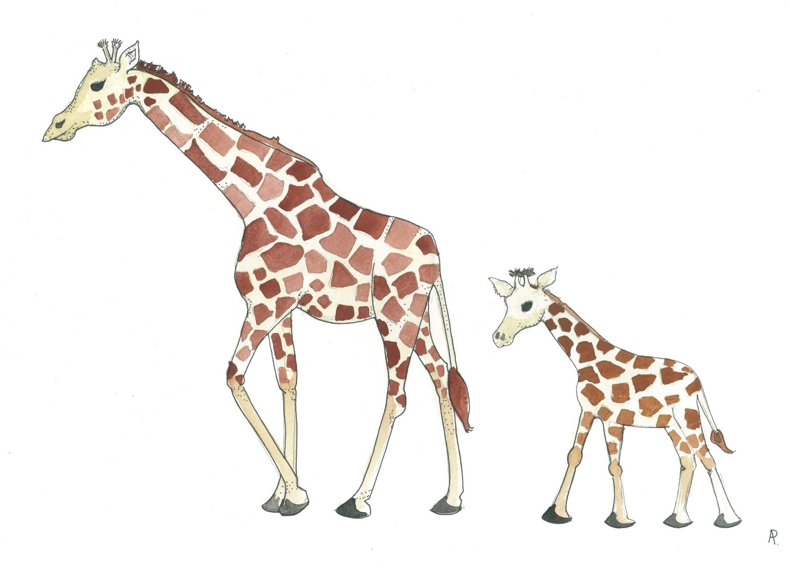 5895 Giraffe free clipart.