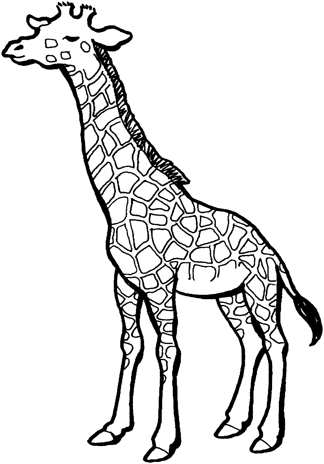 Free Printable Giraffe Coloring Pages For Kids.