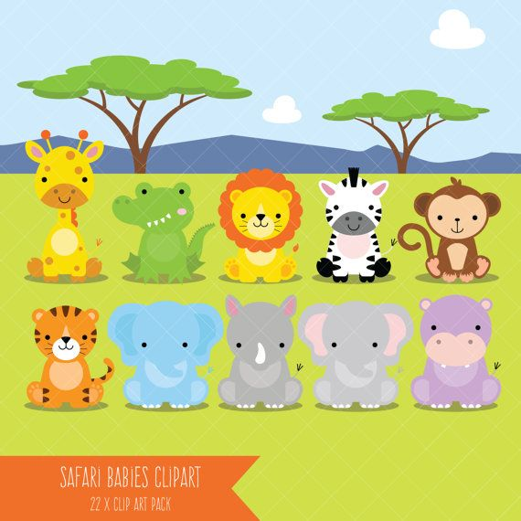 Safari Baby Animals Clipart / Jungle Animals Clipart / Zoo.