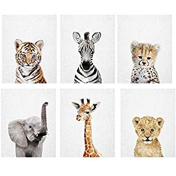 Baby Safari Animal Prints 8x10 (tx).