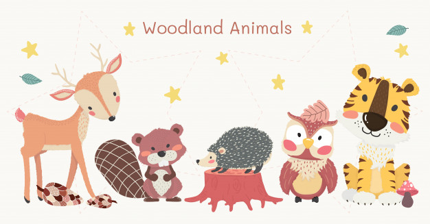 Cute woodland animals clipart set, tiger, reindeer, owl.