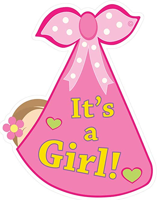 Amazon.com: Cute News It\'s a Girl Baby Door Sign.