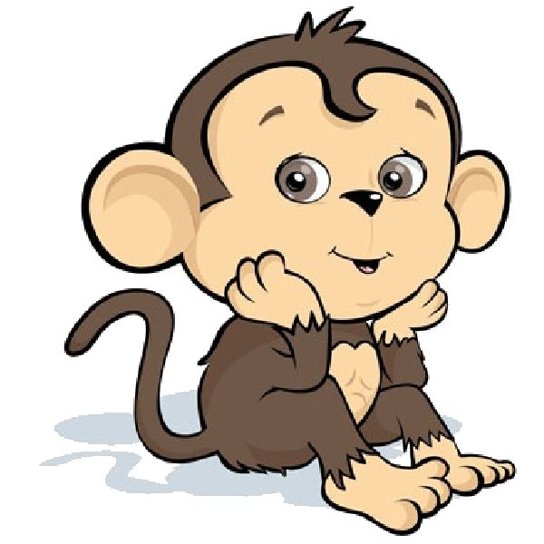 1000+ images about funny monkeys on Pinterest.