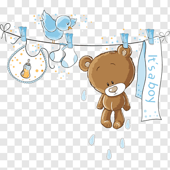 Baby Bear cutout PNG & clipart images.
