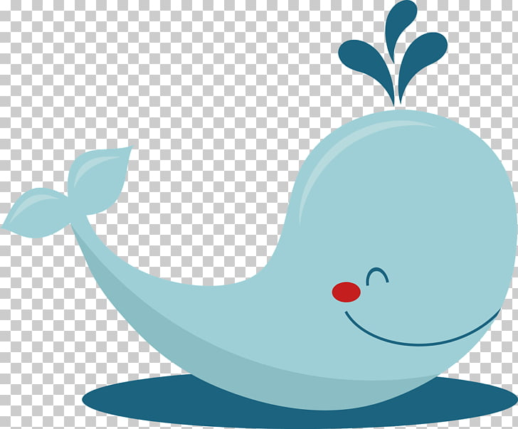 Baby Whale Drawing , Beluga Whale s PNG clipart.