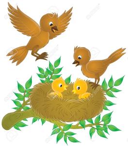 Baby Birds Clipart.