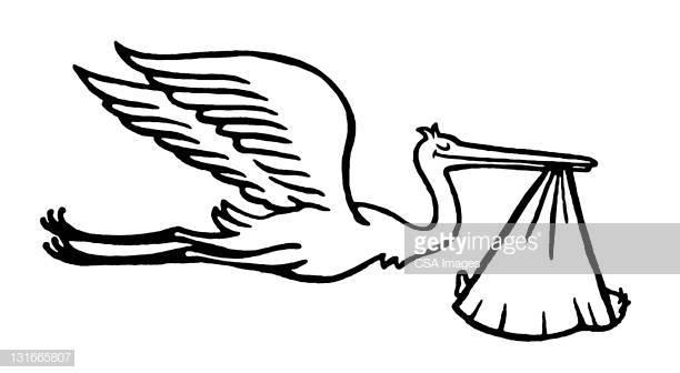 30 Top Bird First Flight Stock Illustrations, Clip art.