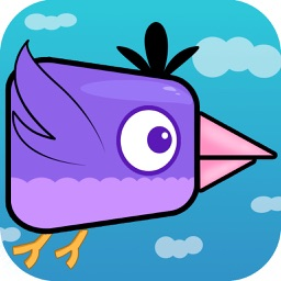 Baby Bird: Endless fun! by Gaetano La Delfa.