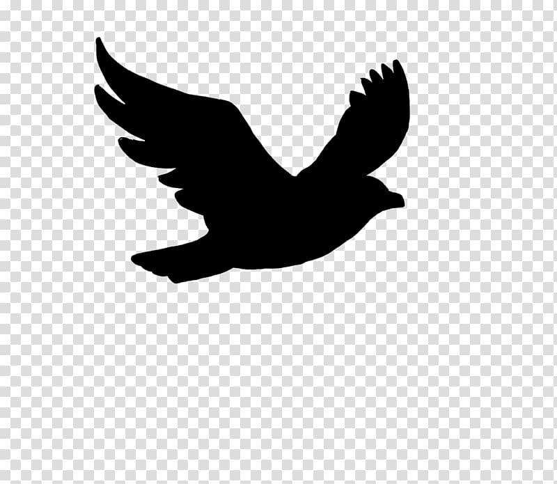 Bird flight Bird flight Silhouette , bird watercolor.