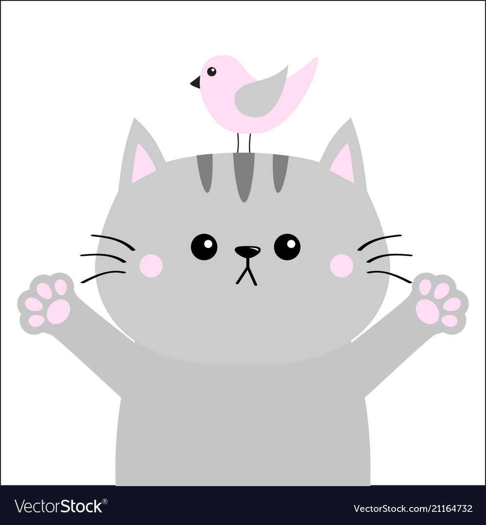 Gray cat ready for a hugging pink bird open hand.