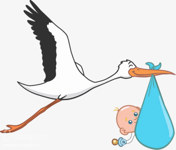 Hand painted baby storks PNG clipart.