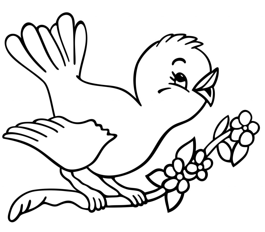 Birds Coloring Pages For Preschool.