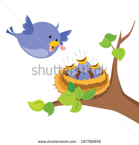 Mother Bird Love Mother Bird Feeds Stock Vector 197788856.
