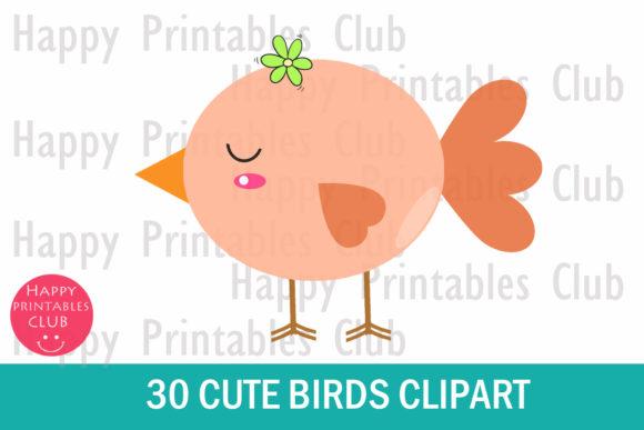 30 Cute Birds Clipart.