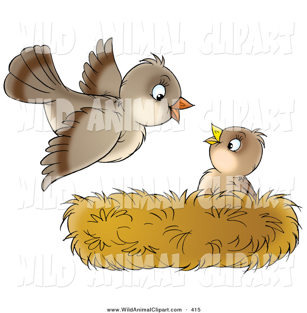 Clip Art of a Cute Baby Bird in a Nest, Looking up at Its Mother As.