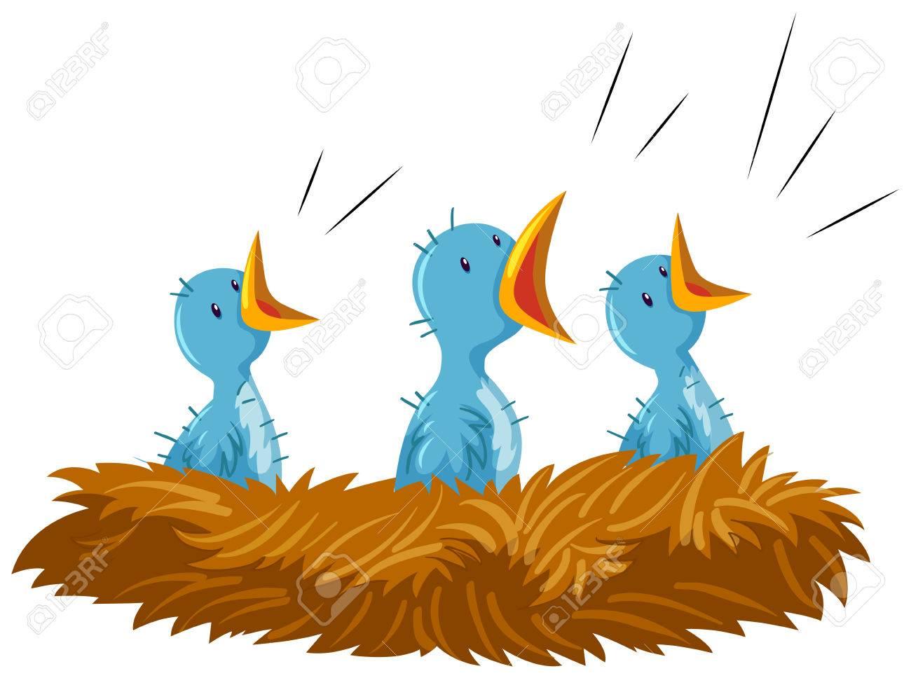 Three baby birds in nest illustration.