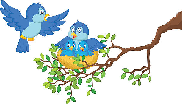 Baby Birds In Nest Clip Art, Vector Images #59866.