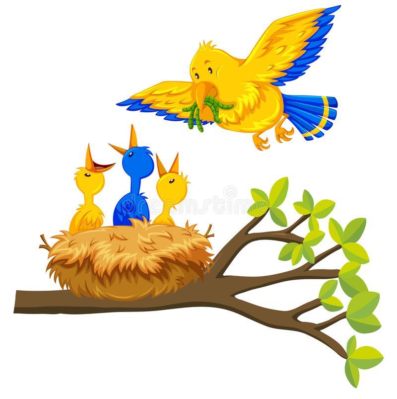 Mother Bird Feeding Baby Birds Nest Stock Illustrations.
