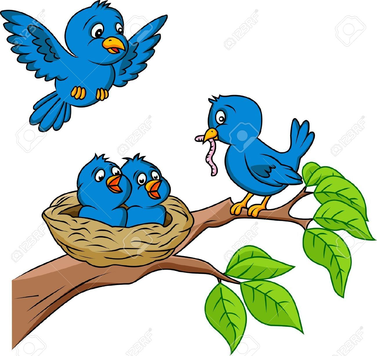 Bird Cartoon Images, Stock Pictures, Royalty Free Bird Cartoon.