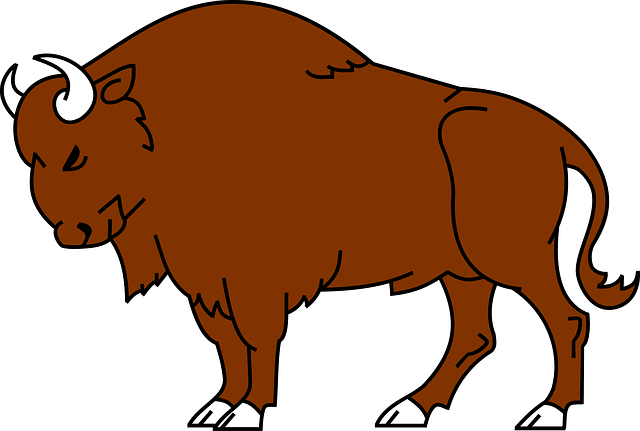 Cute bison clipart.
