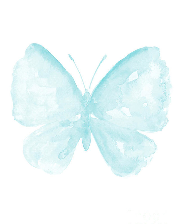 Blue Butterfly, Baby Blue Paster Kids Room Clip Art, Butterflies Watercolor  Painting Poster.