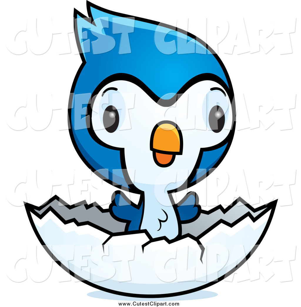 The best free Bluejay clipart images. Download from 8 free.