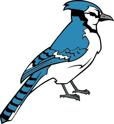 205 Blue Jay free clipart.