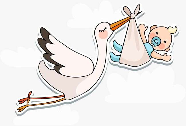 Vector Baby Is Coming, Baby Clipart, Baby, Born PNG and Vector with.